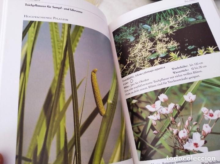 Libros de segunda mano: NEUE GARTENTEICH-PRAXIS (Guía para el nuevo estanque de jardín) - Foto 3 - 223449880