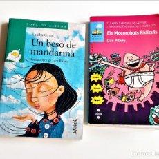 Libros de segunda mano: DOS LIBROS VARIOS. Lote 271152488