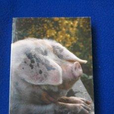 Libros de segunda mano: SUMMER LIGHTNING - P. G. WODEHOUSE. Lote 278455348