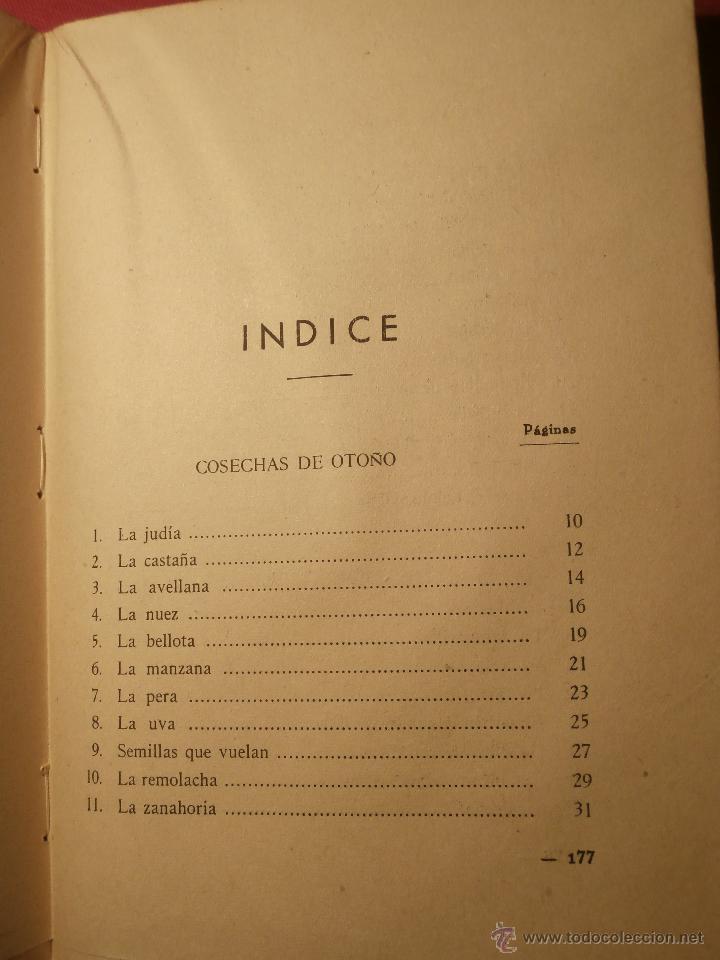 Libros de segunda mano: Excepcional - Un curso de lecciones de cosas - 1944 - Nuevo a estrenar - Libro de experimentos - Foto 9 - 43521434