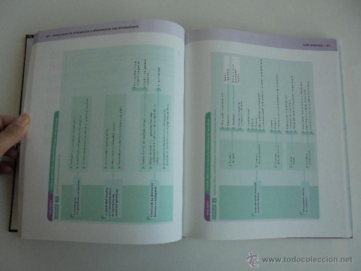 Libros de segunda mano: DIFICULTADES DE APRENDIZAJE E INTERVENCION PSICOPEDAGOGICA. TEORIA, PRACTICAS Y GUIA DIDACTICA. - Foto 7 - 53174855