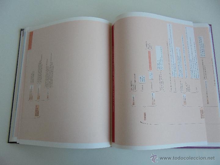 Libros de segunda mano: DIFICULTADES DE APRENDIZAJE E INTERVENCION PSICOPEDAGOGICA. TEORIA, PRACTICAS Y GUIA DIDACTICA. - Foto 8 - 53174855