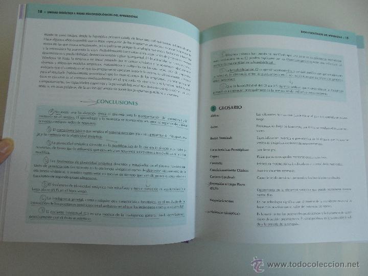 Libros de segunda mano: DIFICULTADES DE APRENDIZAJE E INTERVENCION PSICOPEDAGOGICA. TEORIA, PRACTICAS Y GUIA DIDACTICA. - Foto 17 - 53174855