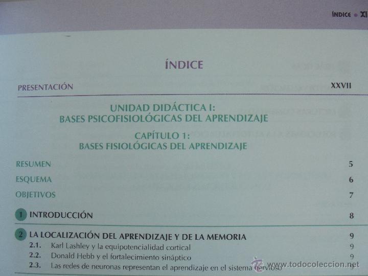 Libros de segunda mano: DIFICULTADES DE APRENDIZAJE E INTERVENCION PSICOPEDAGOGICA. TEORIA, PRACTICAS Y GUIA DIDACTICA. - Foto 18 - 53174855