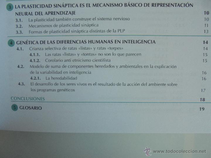 Libros de segunda mano: DIFICULTADES DE APRENDIZAJE E INTERVENCION PSICOPEDAGOGICA. TEORIA, PRACTICAS Y GUIA DIDACTICA. - Foto 19 - 53174855