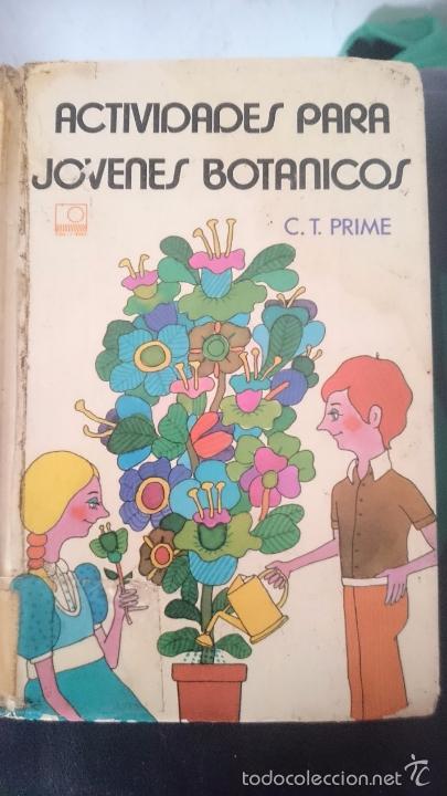 ACTIVIDADES PARA JOVENES BOTANICOS (Libros de Segunda Mano - Ciencias, Manuales y Oficios - Pedagogía)