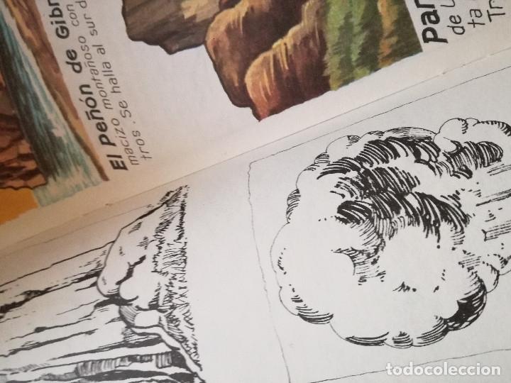 Libros de segunda mano: 10 Colección Gigante infantil ANIMALES-PECES-INSECTOS-NATURALEZA-DEPORTES-SOLDADOS ANTALBE - Foto 18 - 126890463