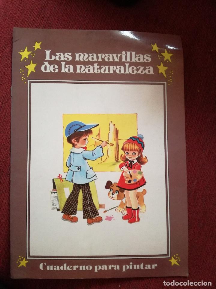 Libros de segunda mano: 10 Colección Gigante infantil ANIMALES-PECES-INSECTOS-NATURALEZA-DEPORTES-SOLDADOS ANTALBE - Foto 21 - 126890463
