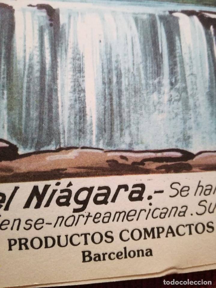 Libros de segunda mano: 10 Colección Gigante infantil ANIMALES-PECES-INSECTOS-NATURALEZA-DEPORTES-SOLDADOS ANTALBE - Foto 20 - 126890463