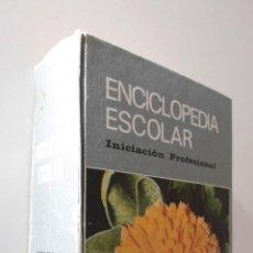 Libros de segunda mano: NUEVA ENCICLOPEDIA ESCOLAR H.S.R. INICIACIÓN PROFESIONAL - SANTIAGO RODRÍGUEZ, S. A.. Lote 155773674