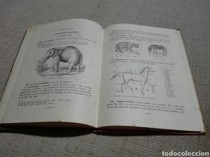Libros de segunda mano: Ciencias cosmológicas. Segundo curso. 1950. Luis vives - Foto 3 - 159300022