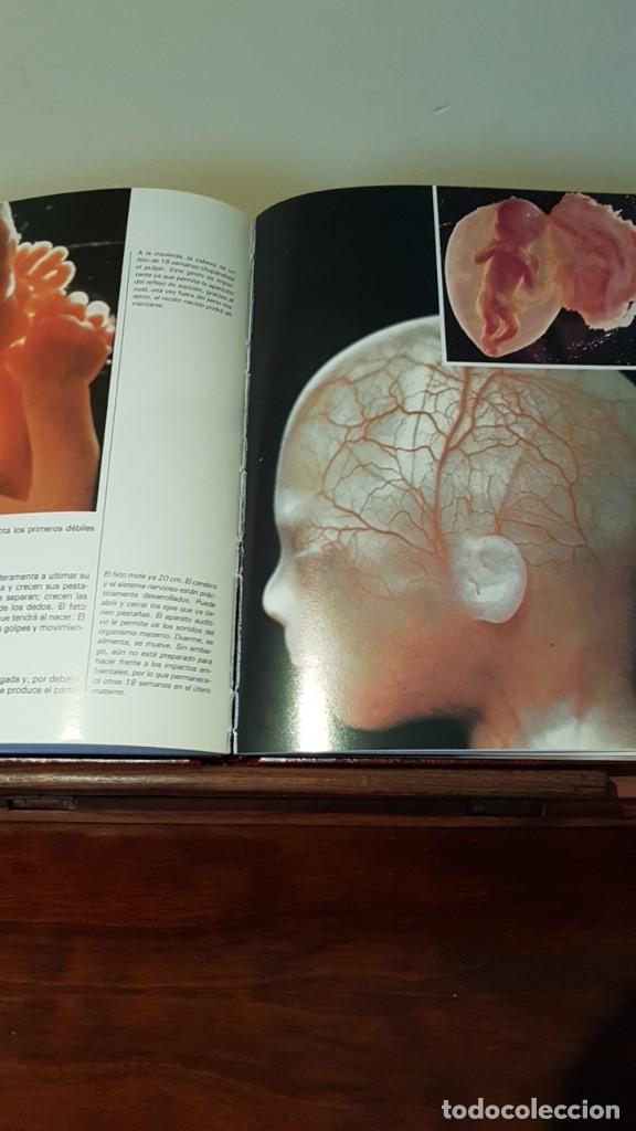 Libros de segunda mano: PROGRAMA DE FORMACIÓN DE PADRES Nº1, POR CARLOS GISPERT DE ED. OCÉANO / EXITO EN BARCELONA 1986 - Foto 6 - 169004712