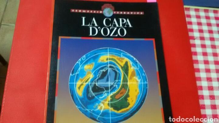 LA CAPA D'OZÓ .COL. TERRAVIVA .ED. CRUÏLLA (Libros de Segunda Mano - Ciencias, Manuales y Oficios - Pedagogía)
