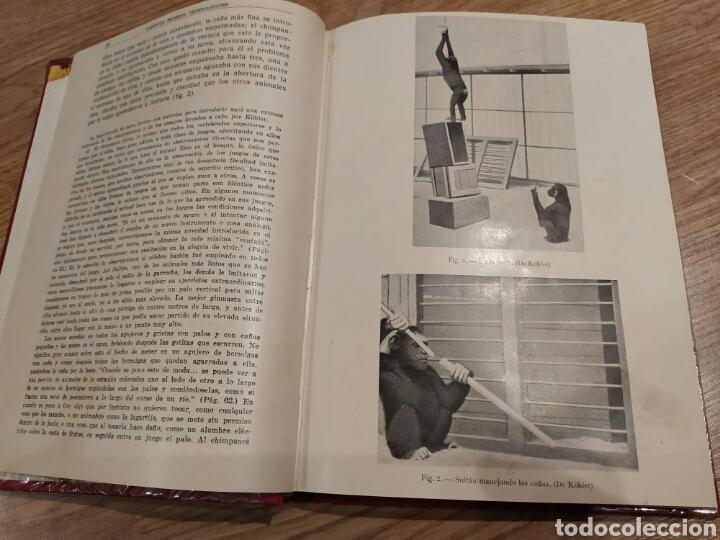 Libros de segunda mano: El desarrollo espiritual del niño. Karl Carlos buhler. Espasa Calpe 1934 - Foto 6 - 182735770