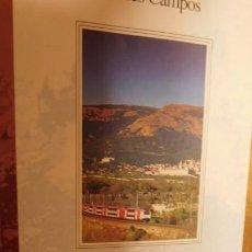 Libros de segunda mano: MADRID EN CERCANÍAS: EXCURSIONES DESDE TRES CANTOS, ALCALÁ, ARANJUEZ, LEGANÉS, MÓSTOLES, EL ESCORIAL. Lote 212923608