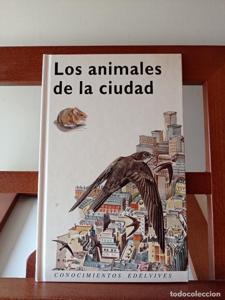 LOS ANIMALES DE LA CIUDAD. CONOCIMIENTOS EDELVIVES. ENVÍO CERTIFICADO 4.99. (Libros de Segunda Mano - Ciencias, Manuales y Oficios - Pedagogía)