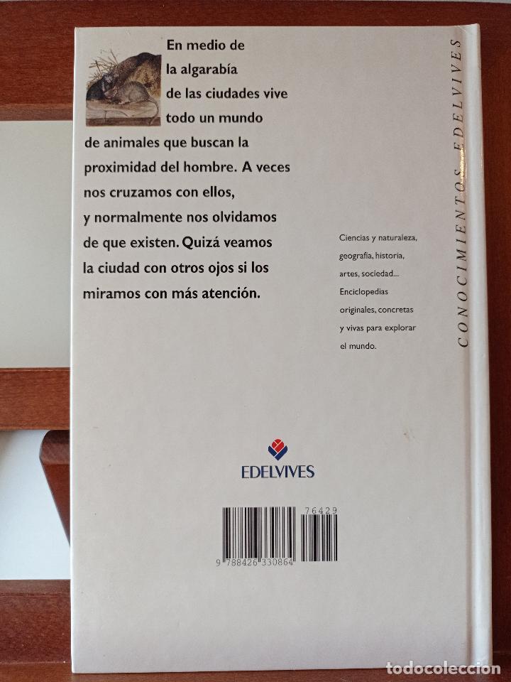 Libros de segunda mano: LOS ANIMALES DE LA CIUDAD. CONOCIMIENTOS EDELVIVES. ENVÍO CERTIFICADO 4.99. - Foto 2 - 240257120