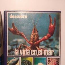 Libros de segunda mano: DESCUBRE LA VIDA EN EL MAR. ORTELL. Lote 240975230