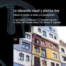 Libros de segunda mano: LA EDUCACIÓN VISUAL Y PLÁSTICA HOY (SIN SUBRAYADOS). Lote 261143740