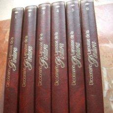 Libros de segunda mano: DICCIONARIO LAROUSSE DE LA PINTURA (6 VOL.) . Lote 26832157