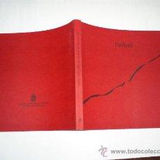 Libros de segunda mano: RUIBAL 1985-1999 UN PROCESO DE DEPURACIÓN 2000 PINTURA RM39709. Lote 22055057