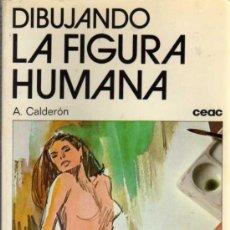 Libros de segunda mano: DIBUJANDO LA FIGURA HUMANA - A. CALDERÓN - CEAC - 1979. Lote 27961467