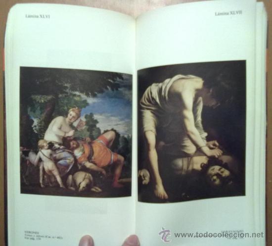 Libros de segunda mano: GUIA DEL PRADO. UNA HISTORIA DE LA PINTURA A TRAVES DE LAS OBRAS DEL MUSEO. - Foto 3 - 34573500