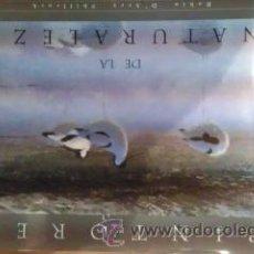 Libros de segunda mano: PINTORES DE LA NATURALEZA (MADRID, 1997). Lote 35877072
