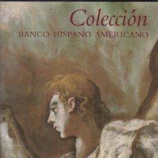 Libros de segunda mano: COLECCIÓN BANCO HISPANO AMERICANO ( PINTURA ) OFERTA. Lote 37167627