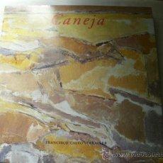 Libros de segunda mano: CANEJA. CALVO SERRALLER, FRANCISCO. 2003. Lote 37462855