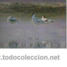 Libros de segunda mano: PINTORES DE LA NATURALEZA,ROBIN D'AREY. Lote 44664079