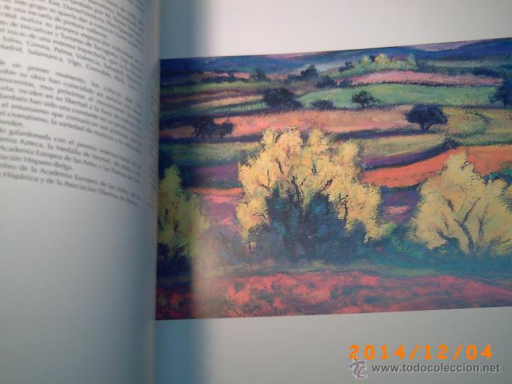 Libros de segunda mano: EL FONT DART LA UNIVERSITAT ROVIRA I VIRGILI-TARRAGONA-PUBLICACIONS URV-DESEMBRE 2008-QUINZE ANIV. - Foto 13 - 46623516