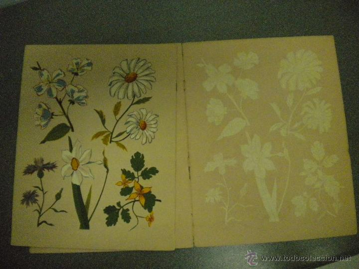 Libros de segunda mano: Cuaderno de pintura. Seix Barral - Foto 4 - 47211016