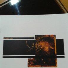 Libros de segunda mano: ALEJANDRO CARRO MUSEO PROVINCIAL DE LUGO 76 PAG 2002. Lote 47939898