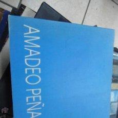 Libros de segunda mano: LIBRO AMADEO PEÑALVER ART-259. Lote 48513496