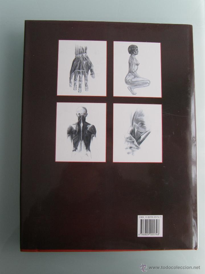anatomía humana para artistas, andrás szunyoghy - Comprar Libros de ...