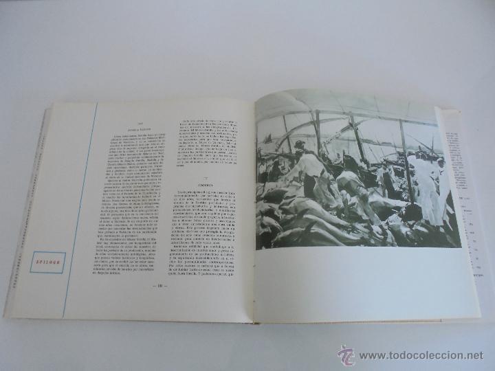 Libros de segunda mano: CRONICA DEL PINTOR JOAQUIN SOROLLA. JOSE MANAUT VIGLIETTI. VER FOTOGRAFIAS ADJUNTAS. - Foto 26 - 51463375