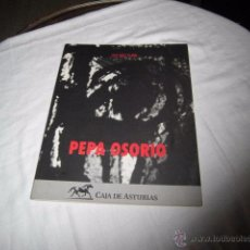 Libros de segunda mano: PEPA OSORIO MONOGRAFIA DE LA PINTORA ASTURIANA. LUIS DIEZ TEJON FOTOGRAFIAS DE JOSE ARIAS GIJON 1993. Lote 53175857