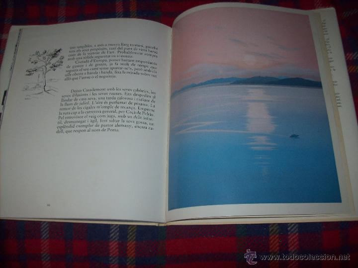 Libros de segunda mano: CASADEMONT.J. BENET / J. IRIARTE.DEDICATÒRIA I FIRMA ORIGINAL DEL PINTOR FRANCESC DASSÍS CASADEMONT - Foto 18 - 54622580
