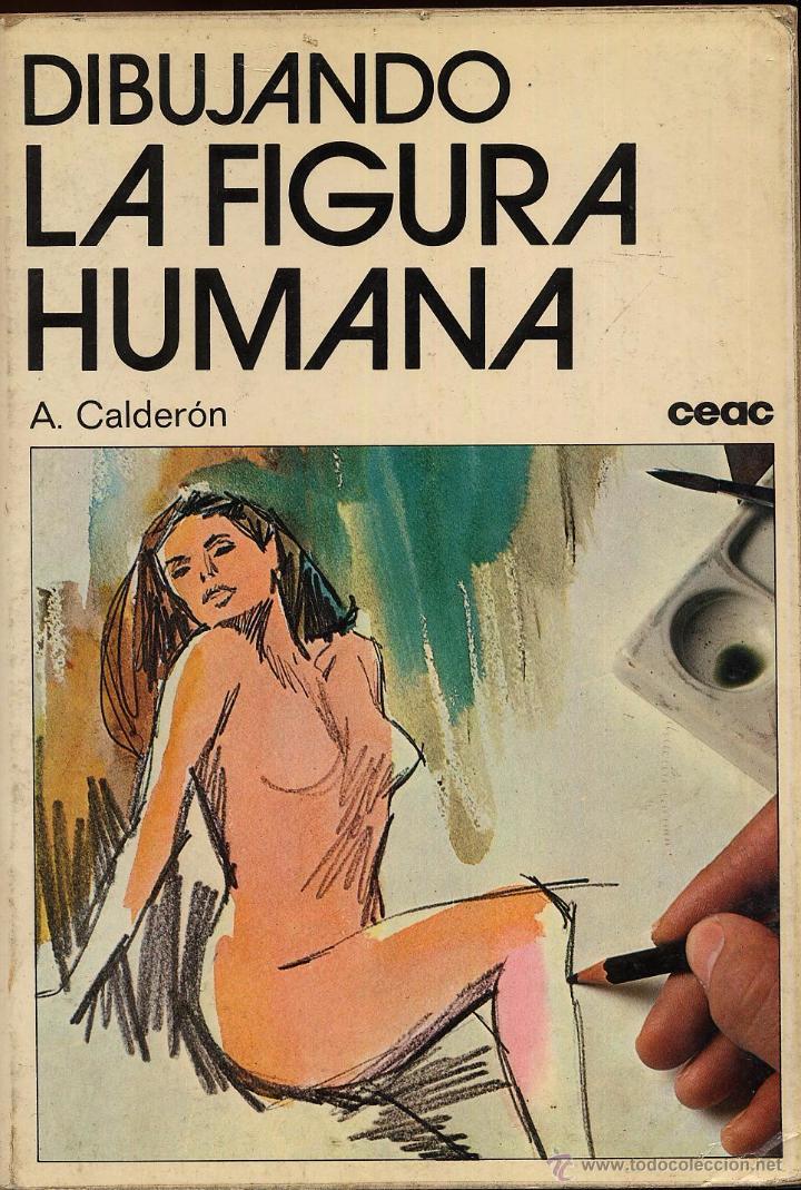 DIBUJANDO LA FIGURA HUMANA -------(REF M1 E1) (Libros de Segunda Mano - Bellas artes, ocio y coleccionismo - Pintura)