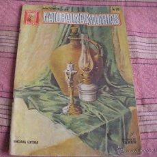 Libros de segunda mano: PINTEMOS LAS NATURALEZAS MUERTAS - COLECCION LEONARDO - NUMERO 25 - VINCINA EDITORIAL. Lote 54941202
