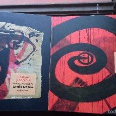 Libros de segunda mano: MARAVILLOSO LOTE DOS LIBROS DE ARTE DE JESÚS MATEO. EL NOVENO DÍA DE LA CREACIÓN. PINTURAS ALARCÓN. Lote 55323464