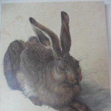 Libros de segunda mano: DURERO. OBRAS MAESTRAS DE LA ALBERTINA. EDICION A CARGO DE JOSE MANUEL MATILLA. MUSEO NACIONAL DEL P. Lote 59472540