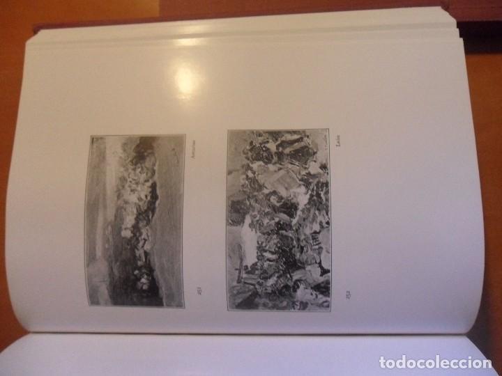 Libros de segunda mano: EIGHT ESSAYS ON JOAQUIN SOROLLA Y BASTIDA. OCHO ENSAYOS SOBRE JOAQUIN SOROLLA Y BASTIDA. 3 LIBROS. 2 - Foto 3 - 62580952