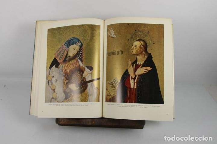 Libros de segunda mano: 4923- LA PINTURA ESPAÑOLA. JACQUES LASSAIGNE. EDIT. CARROGGIO. 1952/55. 3 VOL. - Foto 6 - 43990500