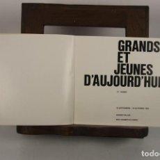 Libros de segunda mano: 4936- GRANDES GENIOS DE HOY EN PINTURA ESCULTURA Y ARTE CINETICO. 1980.. Lote 44037873