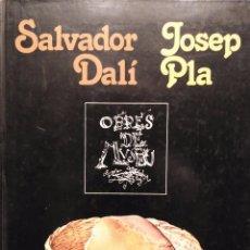 Libros de segunda mano: SALVADOR DALÍ. JOSEP PLA. OBRES DE MUSEU. Lote 64795779