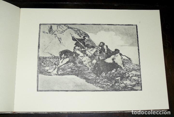 Libros de segunda mano: LA TAUROMAQUIA DE GOYA GUSTAVO GILI 1981 FACSÍMIL TEXTO DE E.LAFUENTE - Foto 4 - 66750342
