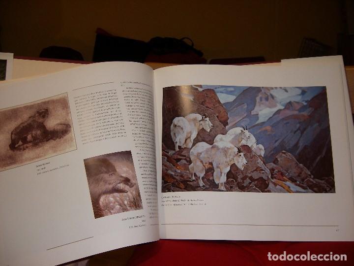 Libros de segunda mano: Pintores de la Naturaleza - Foto 3 - 67053162