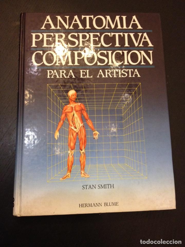 anatomía perspectiva y composición para el arti - Comprar Libros de ...